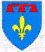 blason de la Provence avec Charles d'Anjou.